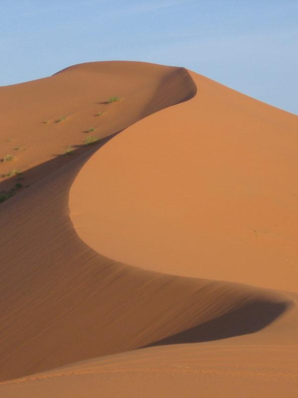 Dreaming Sands